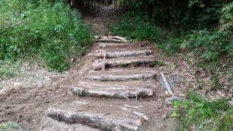 森の中の公園の階段を作っています。