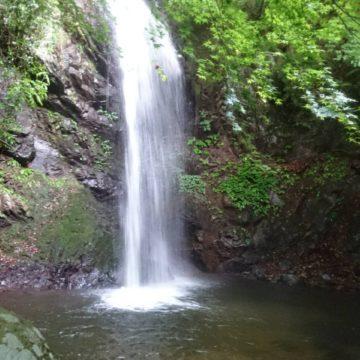 「白藤の滝」が想像以上にマイナスイオンで神がかっていました